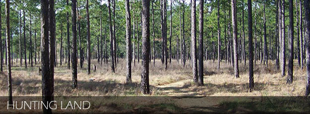 Bullock County Alabama Land For Sale