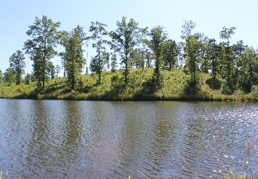 land for sale Chilton County AL