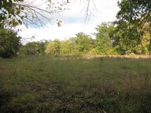 230 acres in Hope Hull, Montgomery