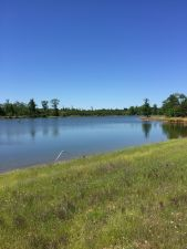 112+ acres with pond, choose lot size Ramer Area