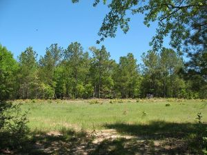 Established Hunting tract Autauga County