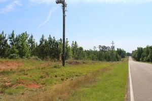 10 acre lots Naftel Road Smith Road in Ramer