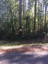 Tallapoosa County 1 acre wooded lot