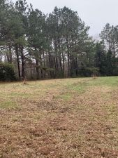 Conecuh County 18 acres perfect for home or recreational use