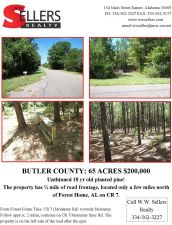 65 acres with planted pine in Forest Home