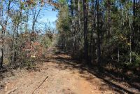 Owner Finance!! Large Tract in Elmore County- perfect for hunters and investors  - ,