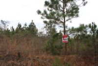 REDUCED PRICE~5 acre lot in Pike County, open to mobile homes - ,