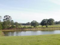 Houlton Rd, 15 acres with pond - ,