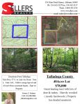 Great hunting tract in Talladega County - ,