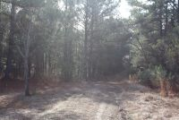 Beautiful 45 acre tract on Sprague Junction Road - ,