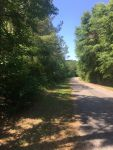 Marengo County 17 acres - ,