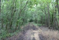 33 Acres in Montgomery County - ,