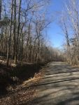 Recreational Land on Hickory Grove RD, Ramer area - ,