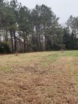 Conecuh County 18 acres perfect for home or recreational use - ,