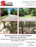 65 acres with planted pine in Forest Home - ,