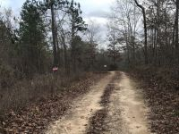 Autauga County 38 acres, perfect for recreation - ,