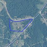 Nice 13 ac tract with road frontage in Bullock County - ,
