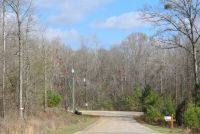 Highland Home wooded lots for homesites - ,
